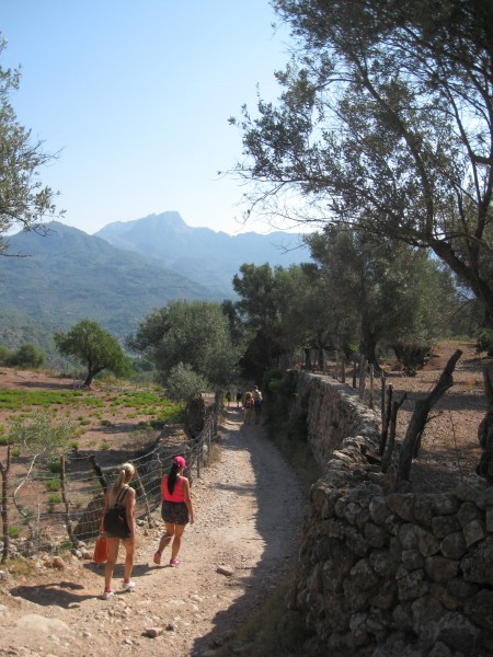 Hiking/Walking Mallorca
